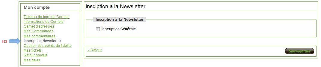 screen newsletter