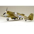 Maquette de F-6B Mustang 1/48