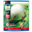 Billes Bio 0.28gr Blanches - G&G - 1kg